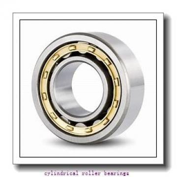 2.165 Inch | 55 Millimeter x 4.724 Inch | 120 Millimeter x 1.142 Inch | 29 Millimeter  LINK BELT MR1311UV  Cylindrical Roller Bearings